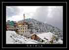 Shimla Sojourn