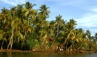 Exotic Kerala - (06 Nights / 07 Days)