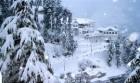 Special Shimla
